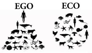 Ego Eco | Spirit Mama Blog